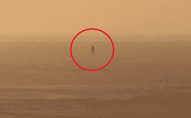 Dramat! Zobacz, co robi ten człowiek w Zatoce Puckiej! (VIDEO)