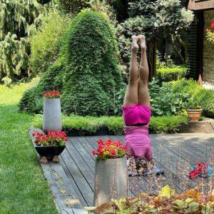 wachowicz joga